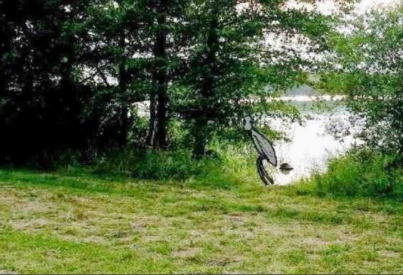 Bliskie spotkanie w Sierakowie w 2001 roku